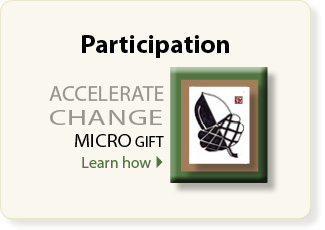 Micro gift like micro finance helps support artists and the arts organization